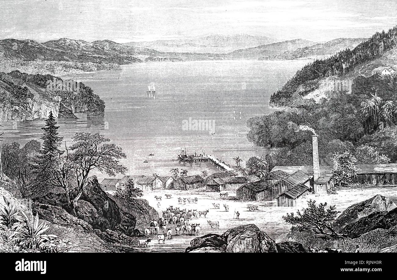 Eine Gravur, S.M. Whitehead & Co die Fabrik für die Produktion von Rindfleisch, Talg und Häuten. Vom 19. Jahrhundert Stockbild