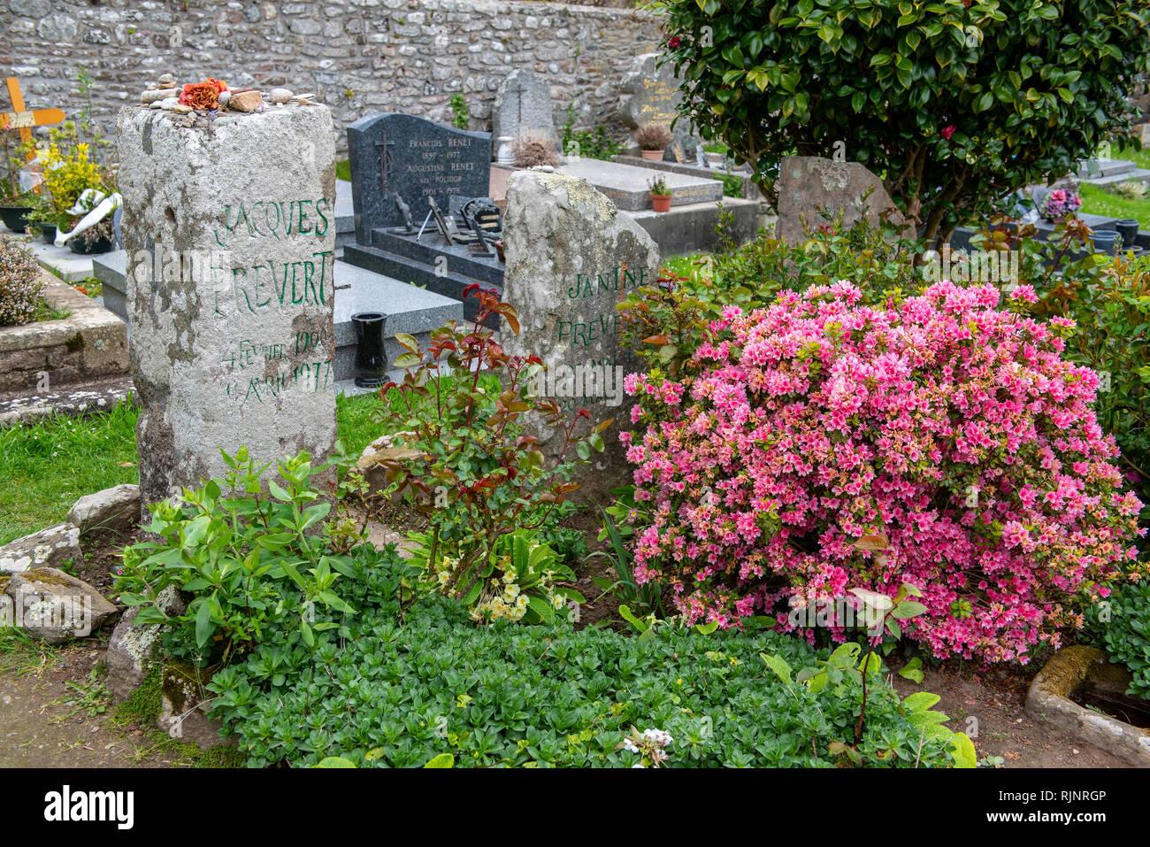 Super Dekorative Gräber und Pflanzen Stockfotos & Dekorative Gräber und @ZG_09
