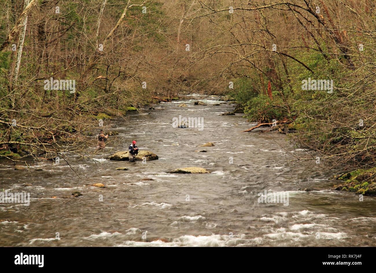 Fischer versuchen ihr Glück auf dem kleinen Fluss in der Nähe der Elkmont historische Bezirk in der Great Smokey Mountains National Park Stockfoto