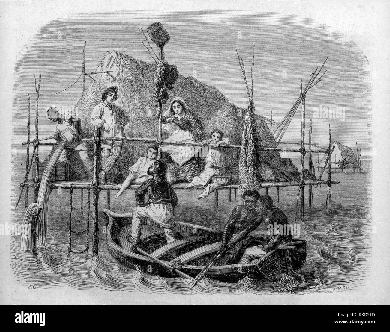 Kuba. Schwämme Fischer. Zeichnung von Karl Girardet, 1853. Schwämme, die Mitglieder der Stamm Porifera (d. h. ''pore Bearer''), sind ein Basaler Metazoen Stockbild