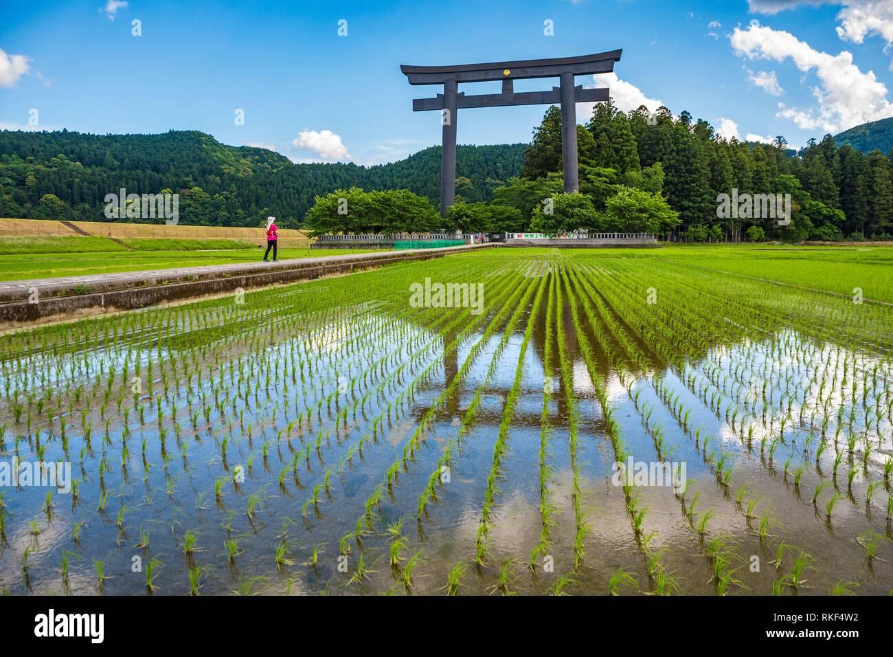 Kumano Kodo Pilgerweg. Otorii. Tori schrein Tor, markiert den Eingang zu Oyunohara. Nakahechi. Präfektur Wakayama. Kii Halbinsel. Kansai Stockbild