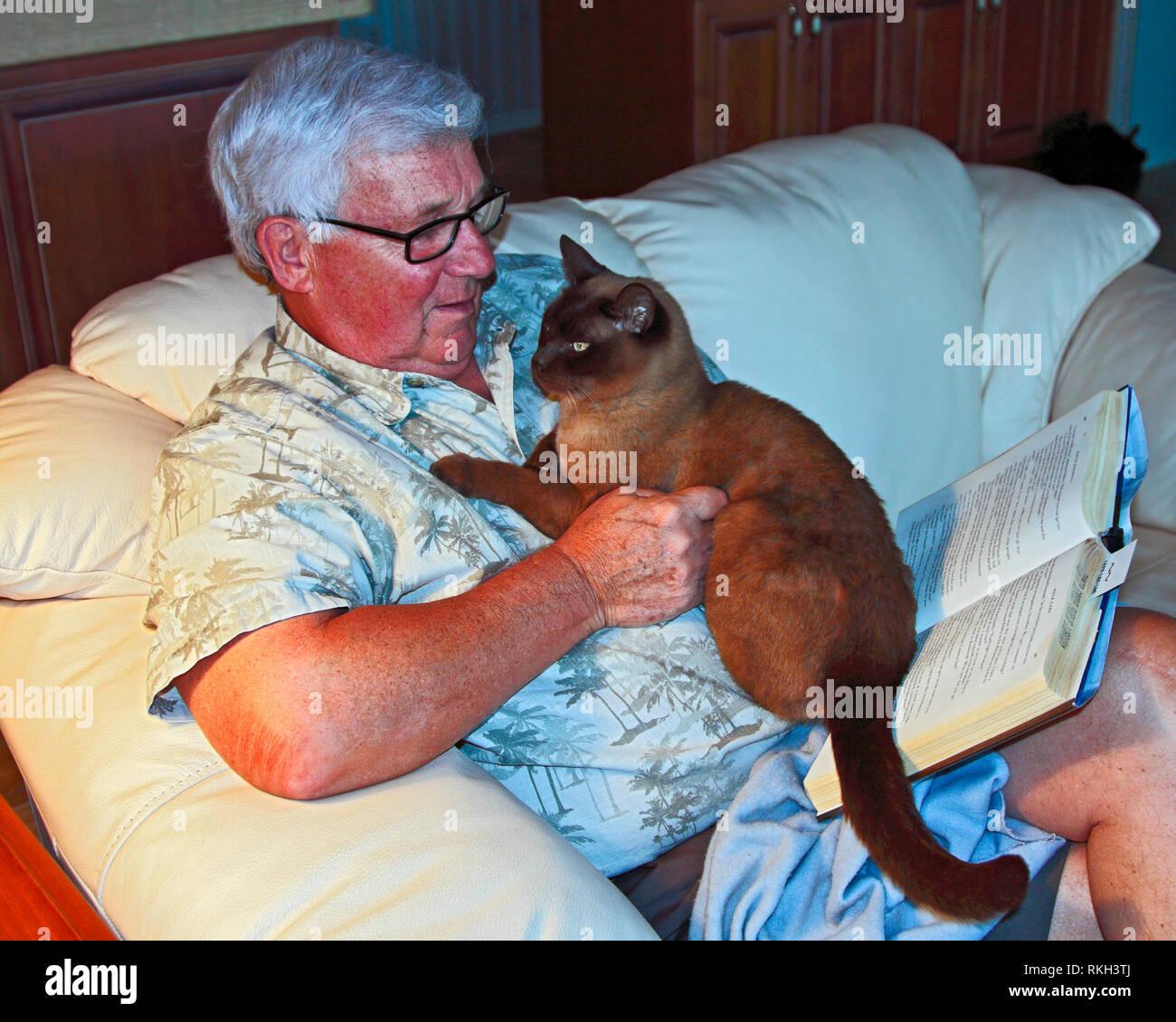Mann lesen Buch; Katze auf der Brust, teilweise Blockierung; PET; Begleitung; Lampe Licht; Entspannend; rötlichen Teint, horizontal; MR, PR Stockbild