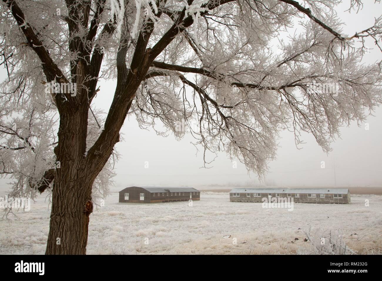 Lebendige Kaserne und Mess Hall, Minidoka National Historic Site, Idaho. Stockfoto
