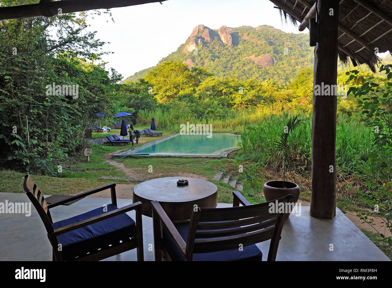 Bar und Restaurant im Gal Oya Lodge, Gal Oya Nationalpark, Sri Lanka, Indien, Südasien. Stockbild