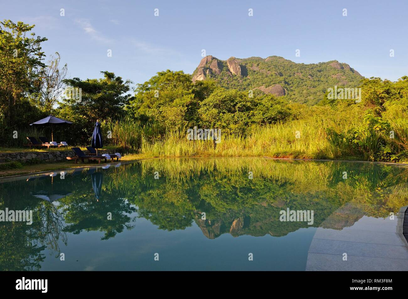 Schwimmbad in Gal Oya Lodge, Gal Oya Nationalpark, Sri Lanka, Indien, Südasien. Stockbild