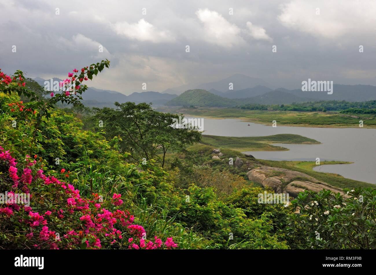 Sri Lanka, Indischer Subkontinent, Südasien. Stockfoto
