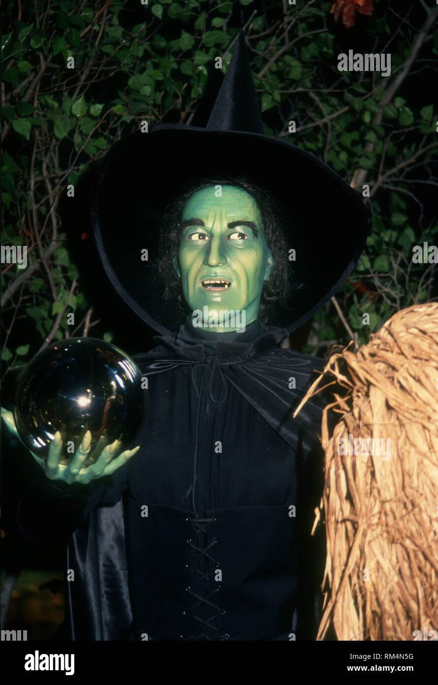 der zauberer von oz wicked witch schmelzen