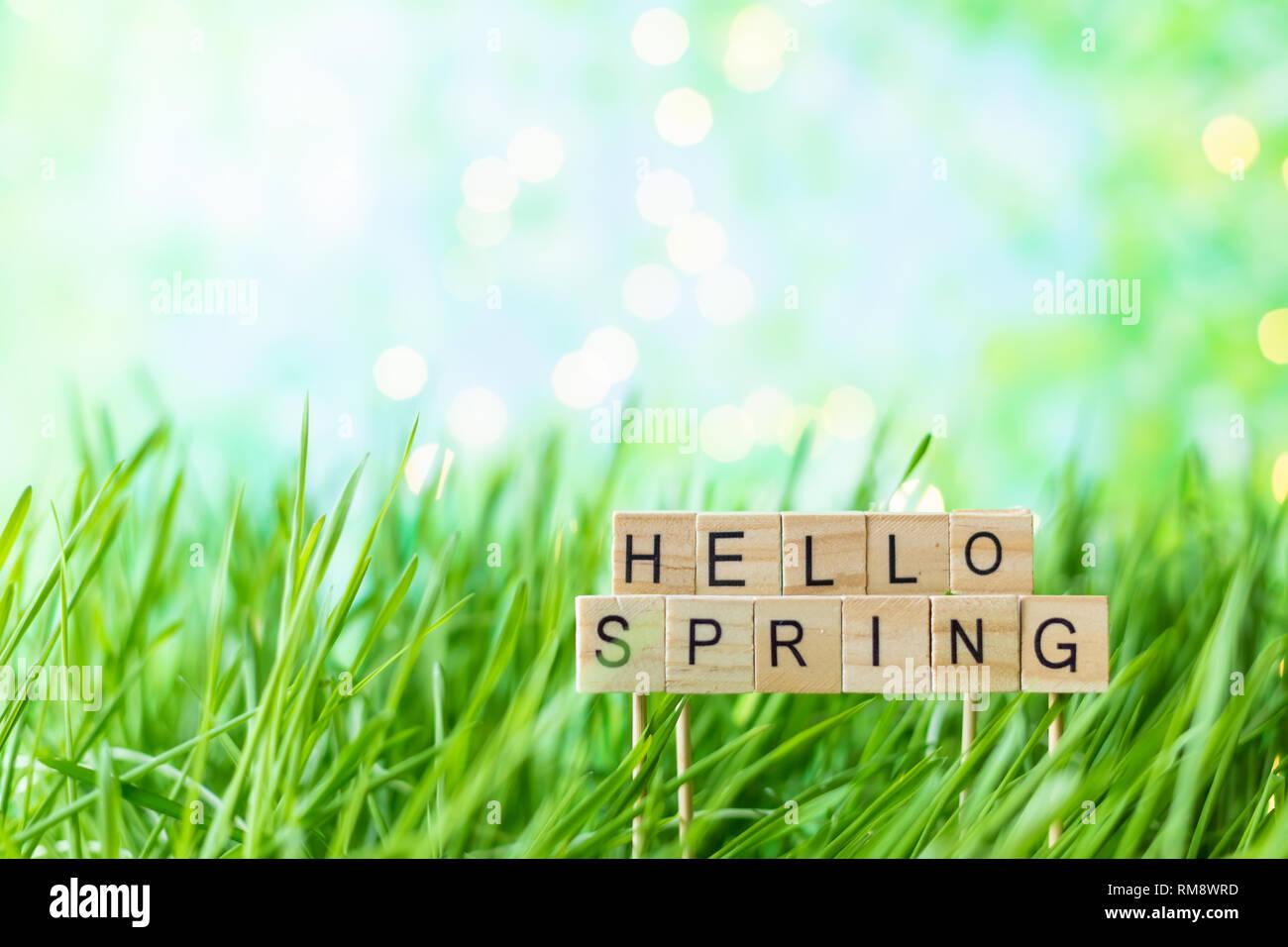 Phrase Hallo Frühling auf dem Hintergrund des grünen Grases mit Tau Stockbild