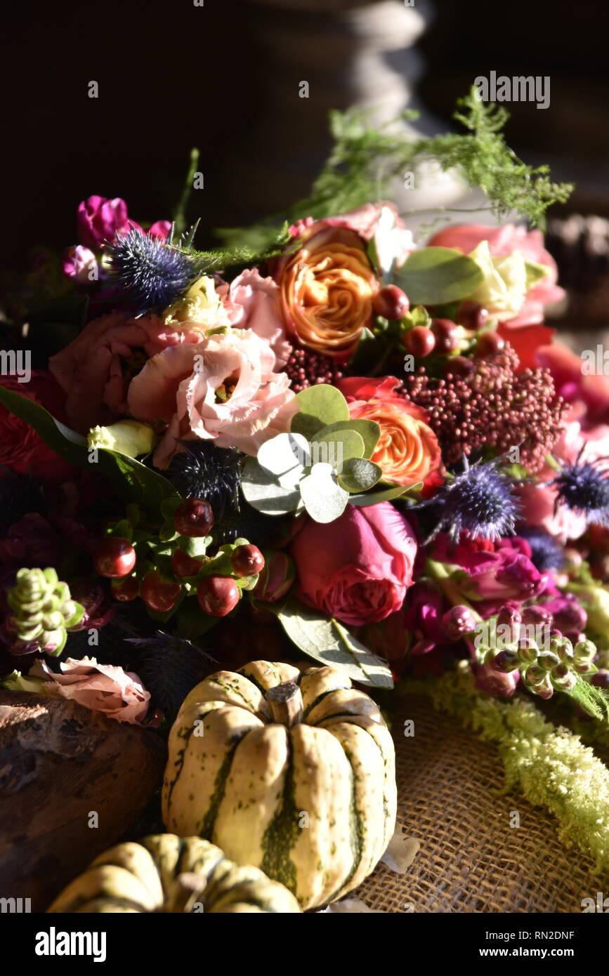 Schönen leuchtenden Blüten in einer Anzeige in einer starken niedrigen natürlichen Licht mit einem rustikalen Kulisse - sie sind detailliert und sehr bunt Stockbild