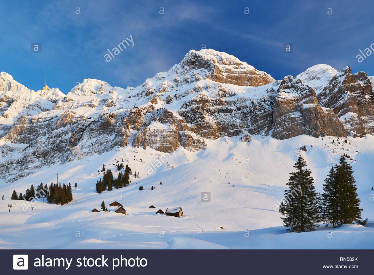 Mit Alpsteinmassiv schneebedeckte Schwägalp und Säntis im Winter, Felsen, blauer Himmel, beiden Schleierwolken, Häuser und Schäunen, Tannen Stockbild