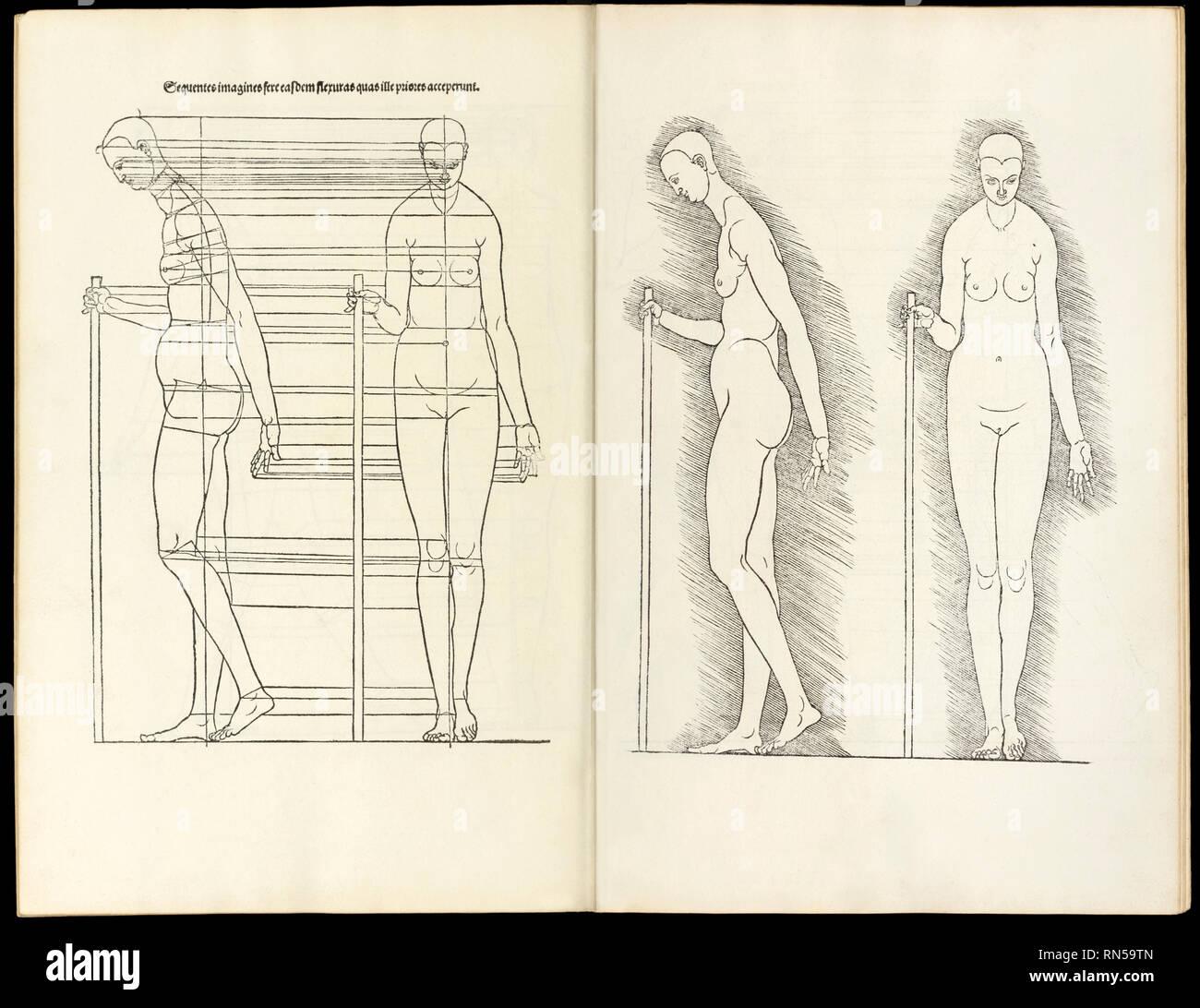 """Weibchen mit Personal, anatomische Holzschnitt aus """"Hierinn Sindh begriffen Vier Bücher von menschlicher Proportion' von Albrecht Dürer (1471-1528) eine Arbeit über den Anteil des menschlichen Körpers, die erstmals in 1528 veröffentlicht. Stockbild"""