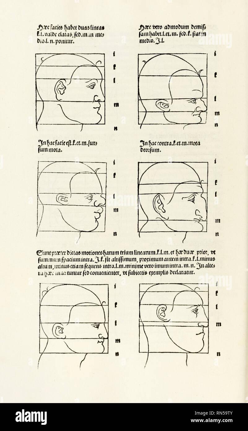 """Proportionen des menschlichen Kopfes von """"Hierinn Sindh begriffen Vier Bücher von menschlicher Proportion' von Albrecht Dürer (1471-1528) eine Arbeit über den Anteil des menschlichen Körpers, die erstmals in 1528 veröffentlicht. Stockbild"""