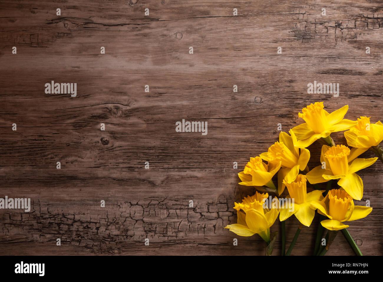 Flach der Narzissen auf einer hölzernen Oberfläche, mit den Blumen in einem Haufen in der Ecke des Bildes the Stockfoto