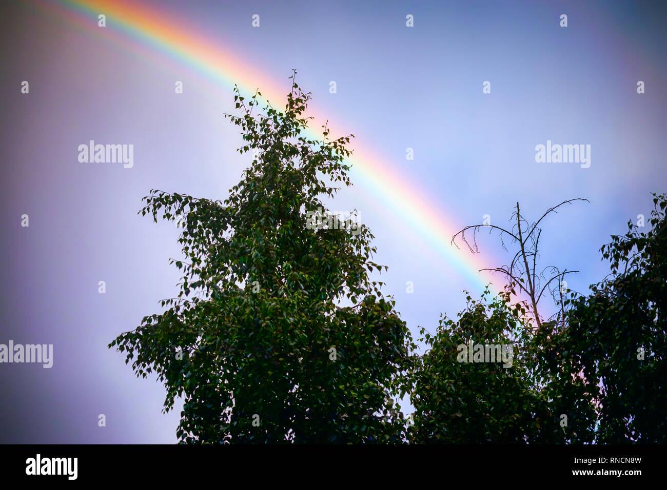 Regenbogen über Himmel. Natürliches Phänomen. Stockbild