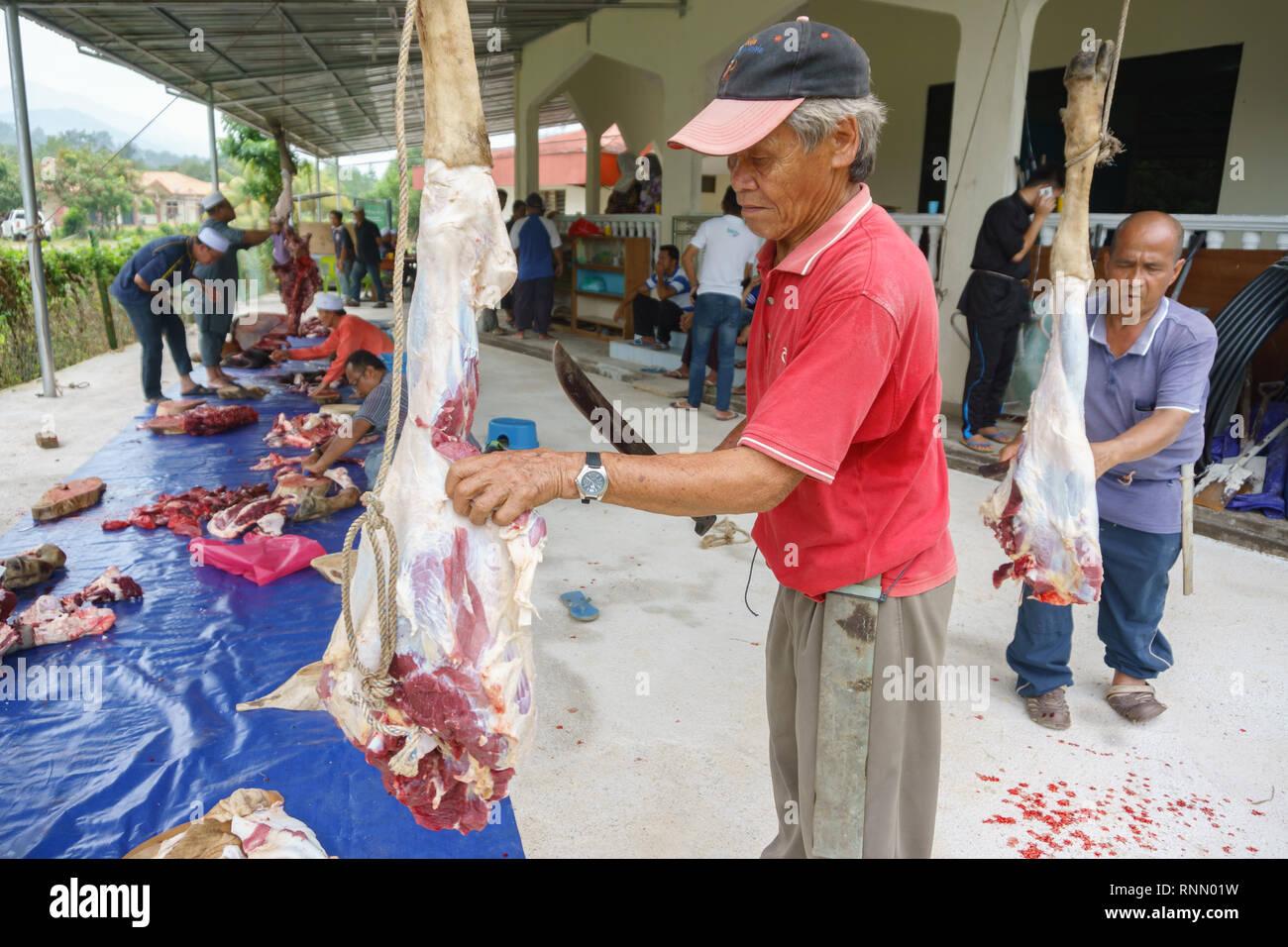 Kiulu Sabah Malaysia - Sep 24, 2015: Muslimische mann Metzger trimmen ein Büffel Kuh zu Muslimen in muss während der Eid Al-Adha Al Mubarak o verteilt werden Stockbild