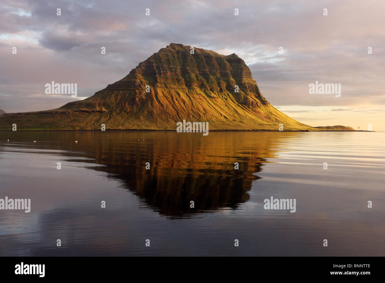 Erloschene Vulkan in Island. Mount Kirkjufell in der Halbinsel Snaefellsnes, Island. Stockbild
