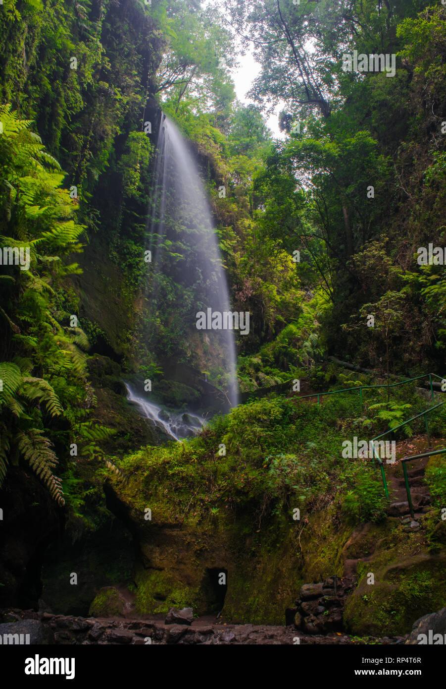 Los Tilos Wasserfall, San Andres y Sauces, La Palma, Kanarische Inseln, Spanien Stockbild
