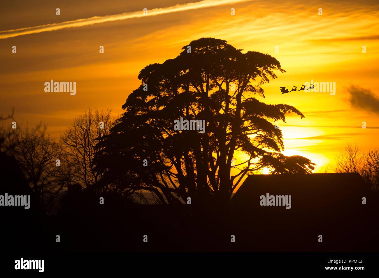 Der Weihnachtsmann auf Schlitten mit Regen Rehe Fliegen mit präsentiert. Eva, Karte, Sonnenuntergang, Baum, Bäume, Knurrhahn, Isle of Wight, England, Stockbild
