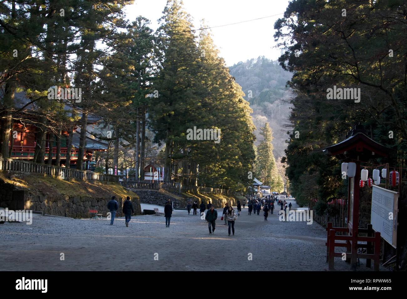 Nikko-Path zu den Schreinen Stockbild