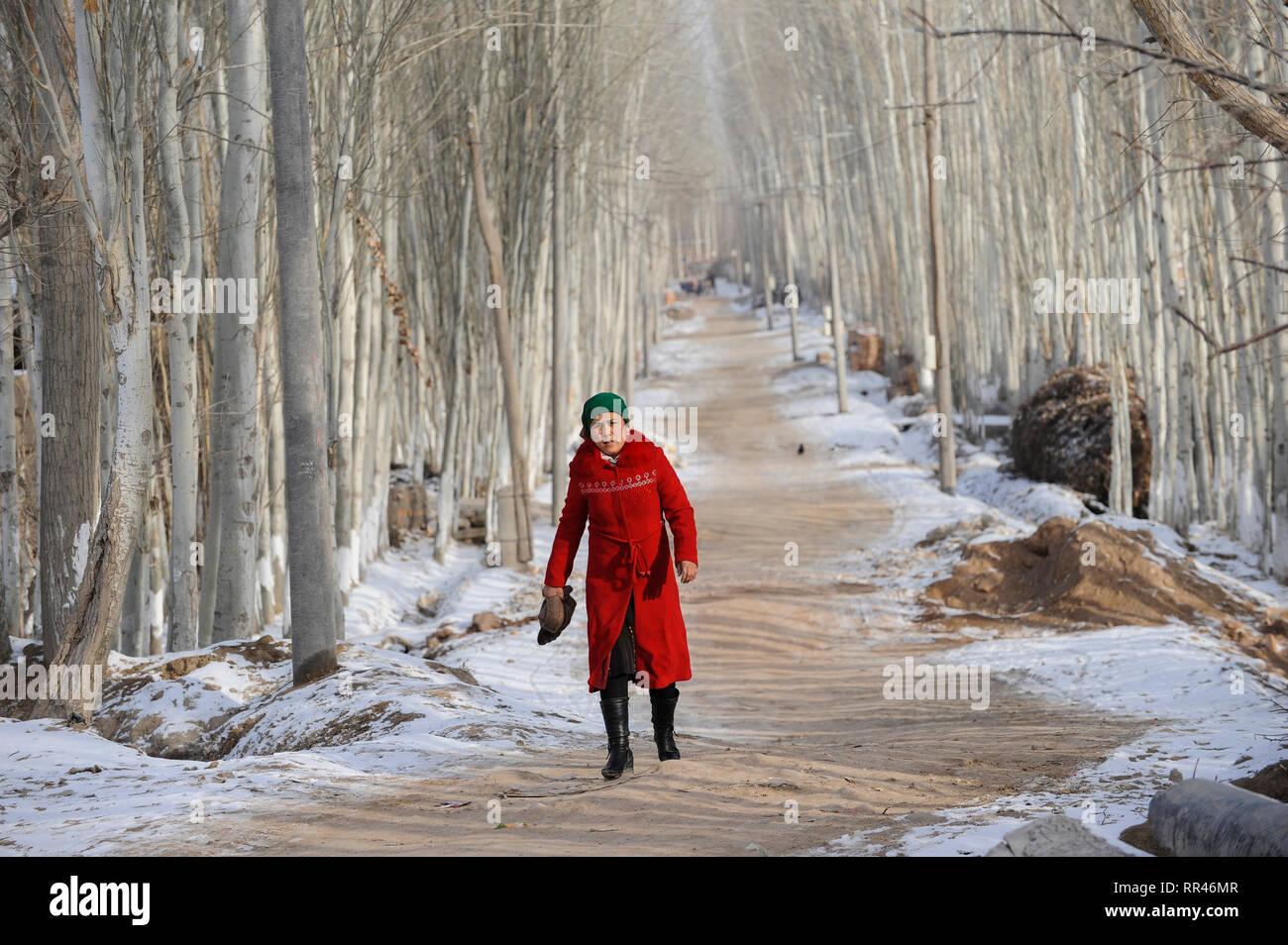 CHINA Provinz Xinjiang, uigurischen Stadt Opal in der Nähe von Kashgar, Frau im roten Mantel entlang Pappel Allee/China Provinz Xinjiang, uigurische Stadt Opal in Kashgar, hier lebt das Turkvolk der Uiguren, das sich zum Islam bekennt Stockfoto