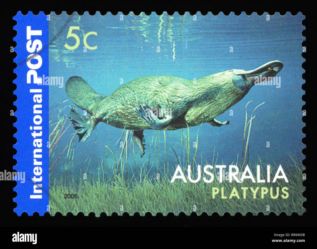 Australien 1999 KÜsten Blumen Gestempelt Australien Briefmarken