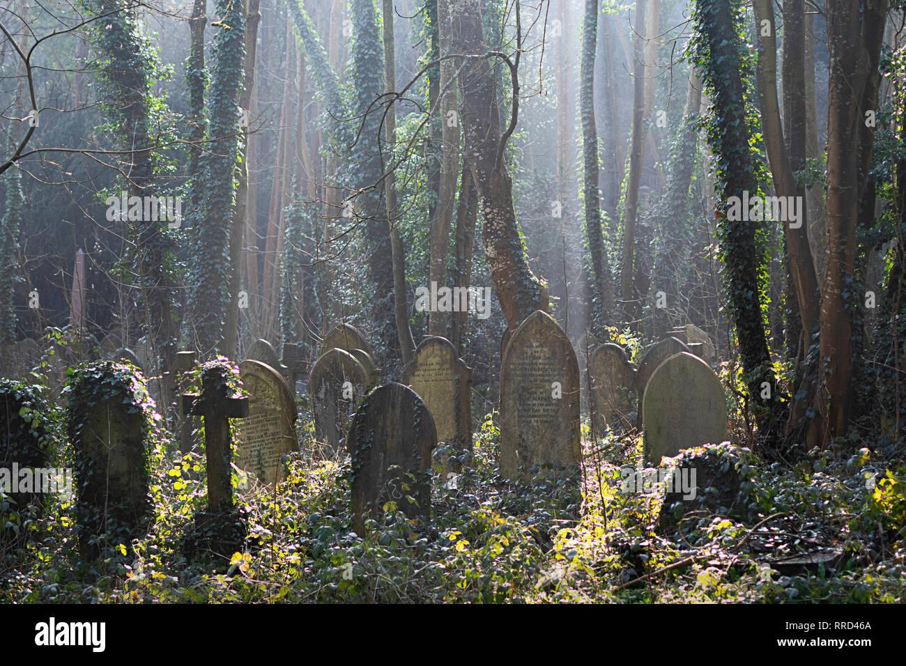 Grabsteine in Schönes Licht im Arnos Vale Friedhof in Bristol. Stockbild