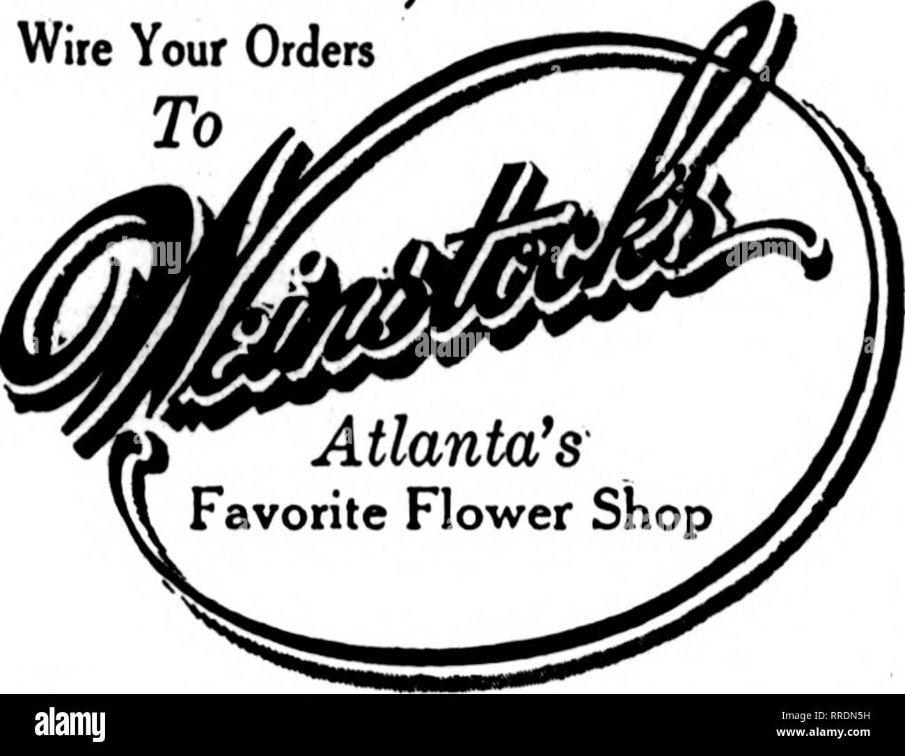 Floristen Review Microform Blumenzucht Atlanta Ga Draht Ihre