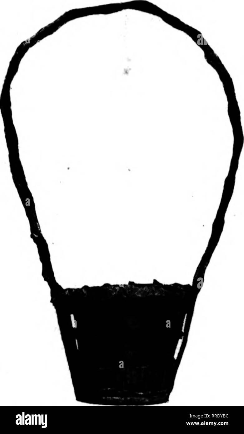 """. Floristen Review [microform]. Blumenzucht. Nr. 357-358-359 Diese Körbe sind von Geflecht hergestellt und enthalten Wasser-Liner. Die han-Dles sind hoch, und die Unterseiten Fett. In ordnen Fertig-ed-Farben. Nr. 357-358 -: {59 Nr. 357 - 15 Zoll liiirh S."""" Jc eaili Nr. 358-n Zoll hoch 45 c Jeder Art.Nr. 359 - 20 Zoll hl (Fh 66 c Jeder. Nr. 289-290-291^ Diese drei Zahlen sind aus% - Ixi, Geflecht, stark emailliert und Fin-ished in zwei Farbtönen. Mit Wasser hergestellt. Farben sortiert.. Bitte beachten Sie, dass diese Bilder extrahiert werden aus der gescannten Seite Bilder, die digital für erhöht worden sein Stockbild"""