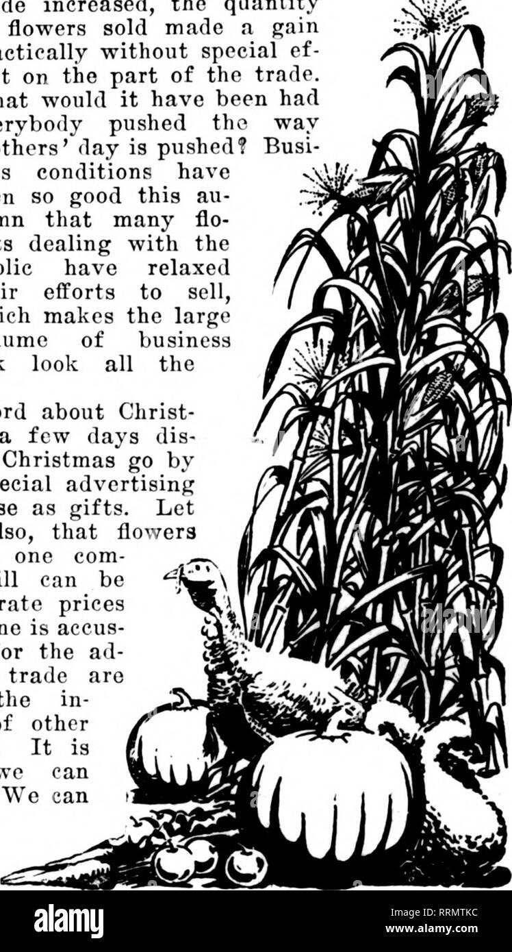 """. Floristen Review [microform]. Blumenzucht. Weihnachten ANZAHL, 14.Dezember. gutes Thanksgiving. Es gab viele Blumen; Sie könnten zu moderaten Preisen angeboten werden; jeder kaufte einige. Es war ziemlich drehen die Tabellen auf den Mann, der so viel für seine Lager zu zahlen er weniger als üblich verkaufen konnte, obwohl er seinen Gewinn dünn. Jeder Überprüfung der Thanksgiving Business wird Sie sicher, beachten Sie, dass die moderate war - bestand, die in der Nachfrage war günstig, ein wenig besser als üblich, vielleicht, aber immer noch die """"vernünftige"""" Länge. Es ist immer so, wenn Leute Blumen kaufen Stockfoto"""