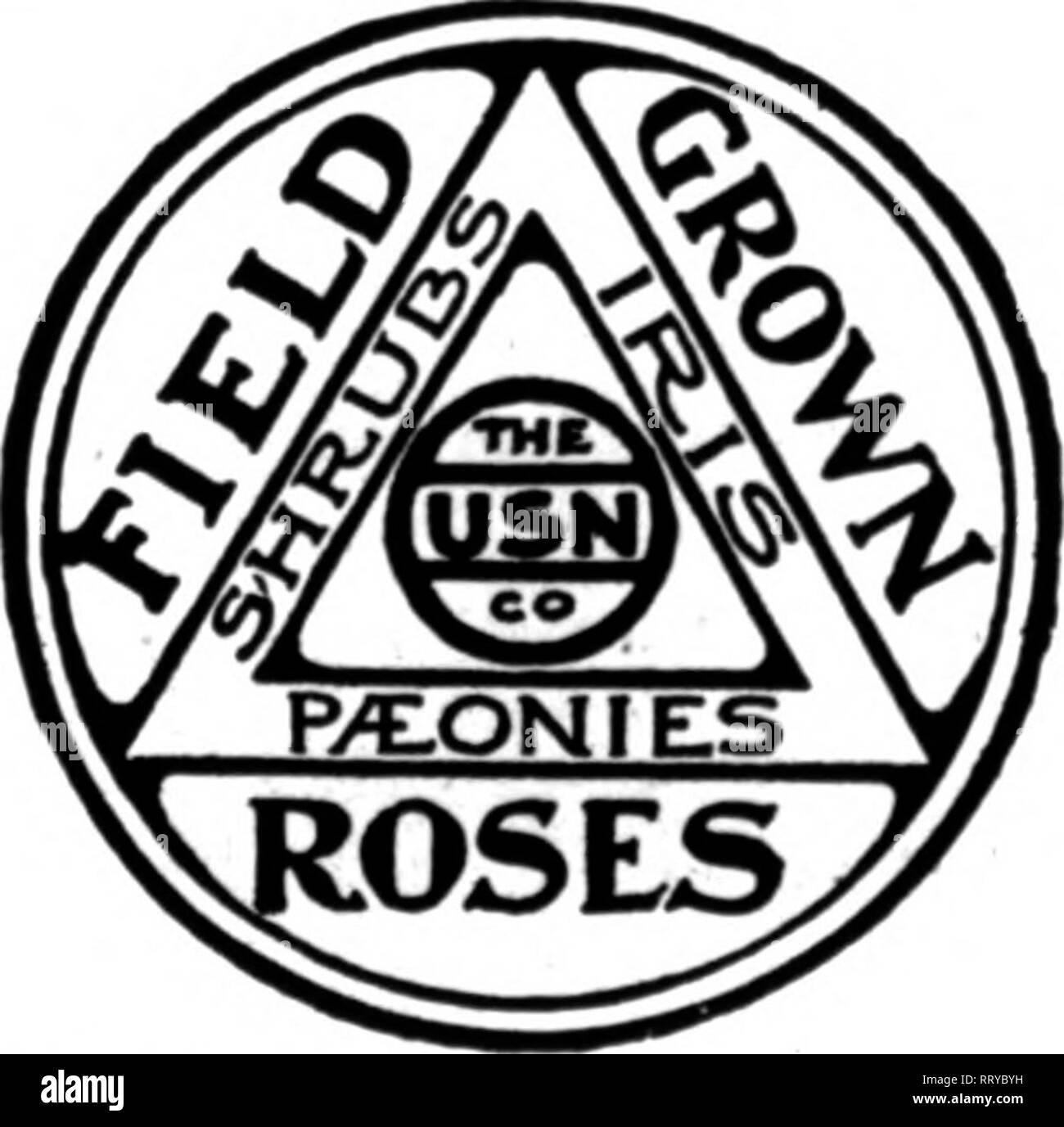 Etwas Neues genug Floristen Review [microform]. Blumenzucht. Herbst Lager Erdbeeren &TS_25
