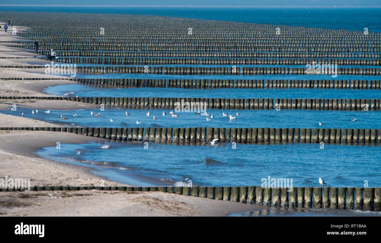 Bildergebnis für Buhnen am Strand von Koserow