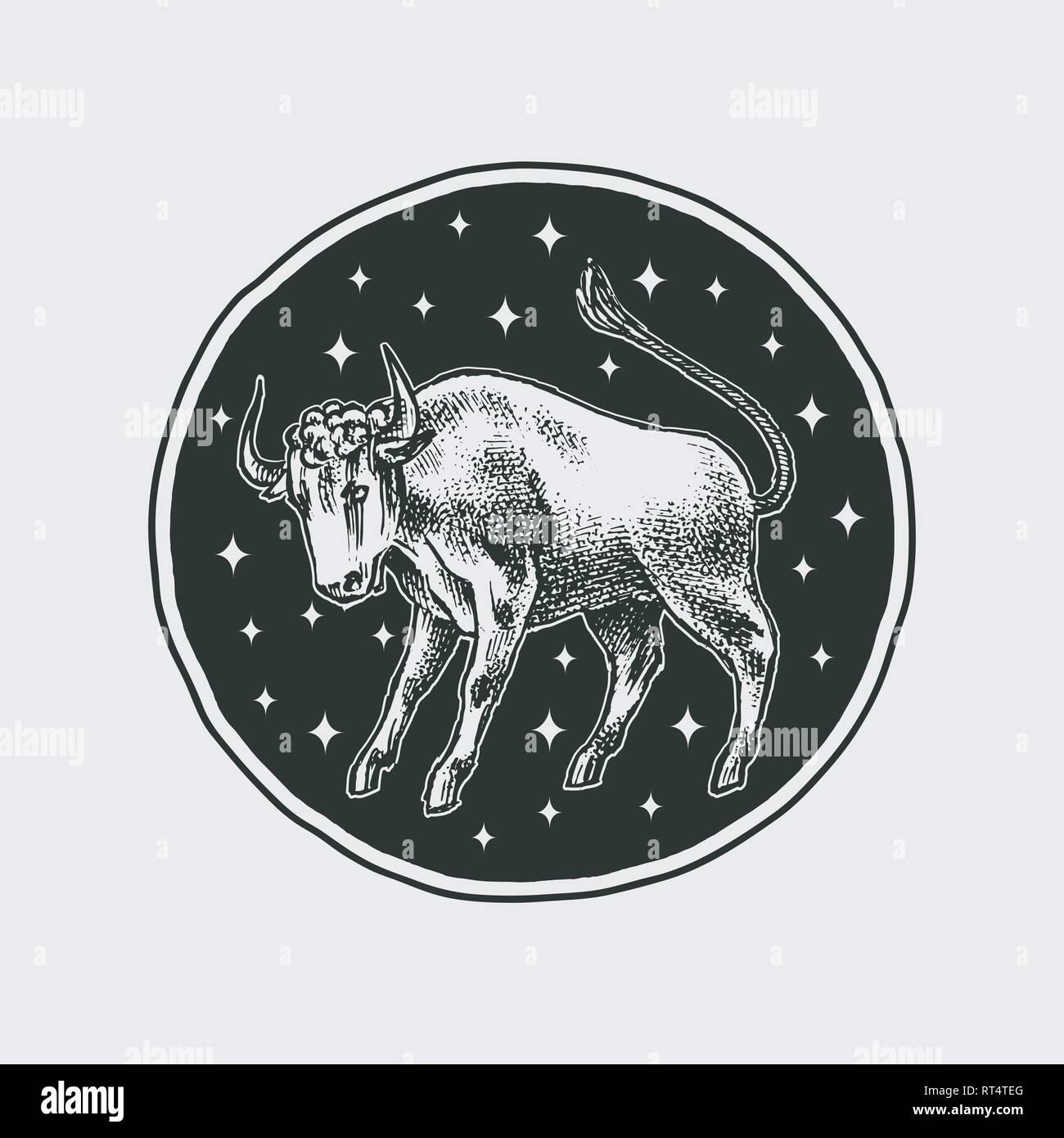 Gemini Mann datiert eine Taurus-Frau