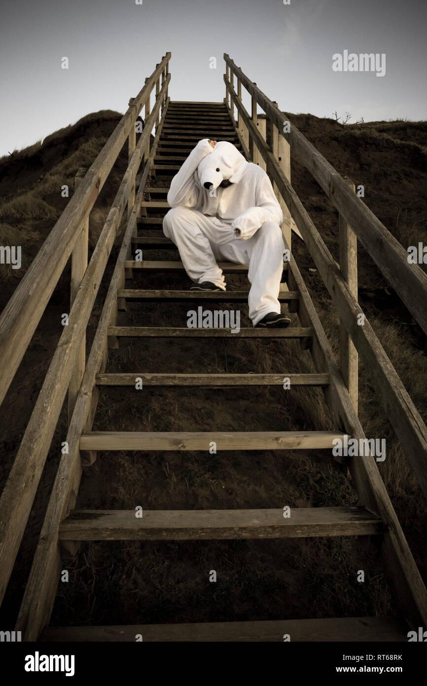 Mann, der Eisbär Kostüm sitzen auf Schritte, Verzweiflung Stockbild