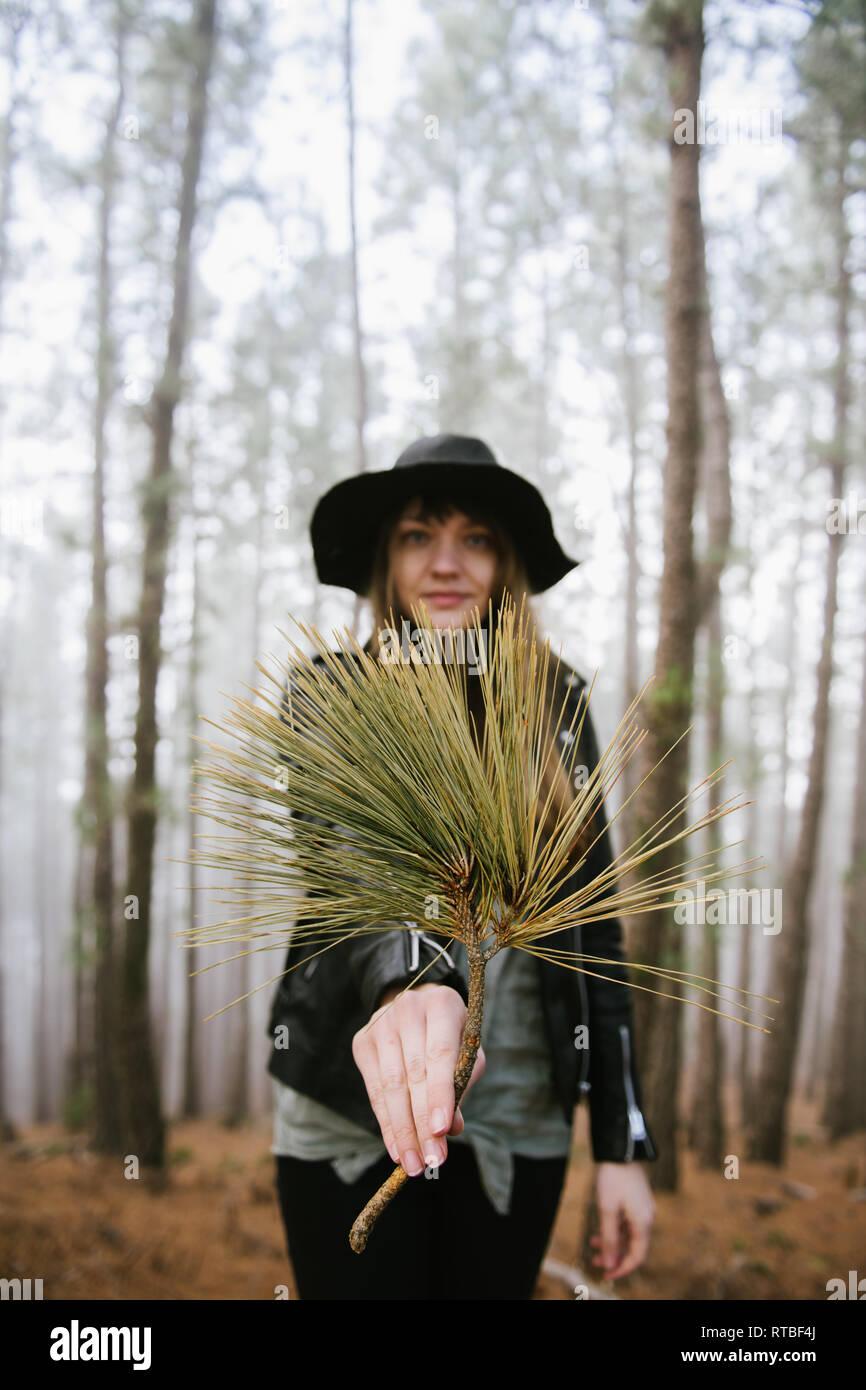 Junge Frau im immergrünen Wald und Baum, während bei Camera suchen Stockbild