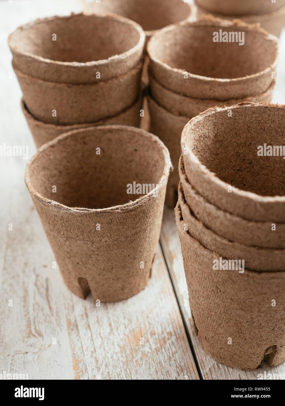 Biologisch abbaubare Torf Pflanzencontainer, die Plastik im Gartenbau zu reduzieren. Stockfoto