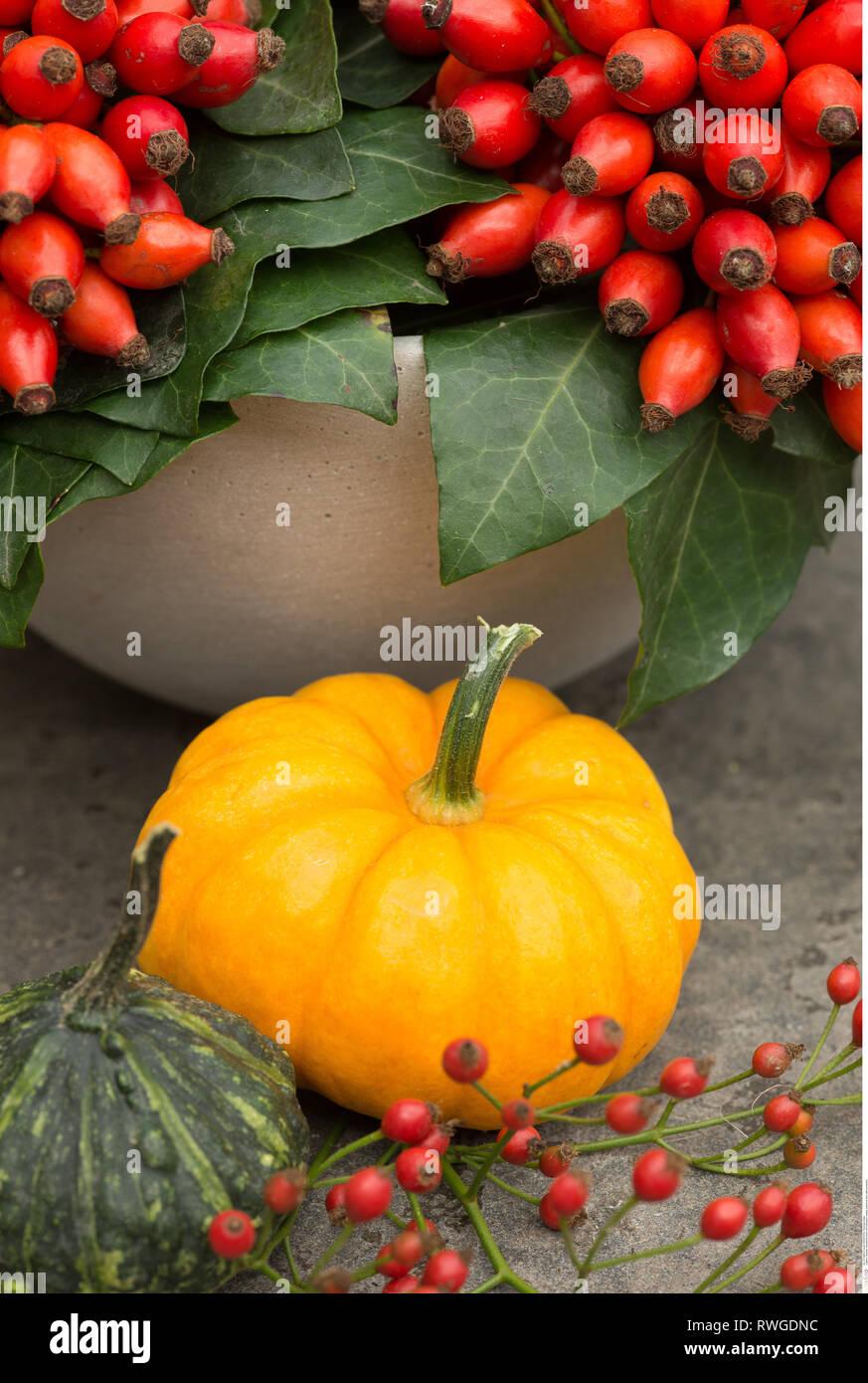 Deko Krbis Stockfotos und bilder Kaufen Alamy