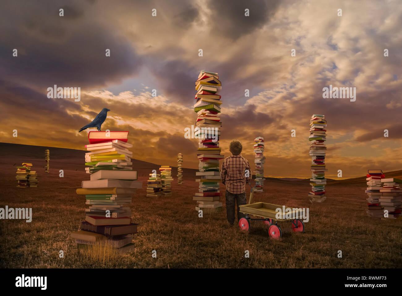 Ein Junge in einem Feld mit einem Wagen am Stapel der Bücher suchen, das zusammengesetzte Bild Stockbild