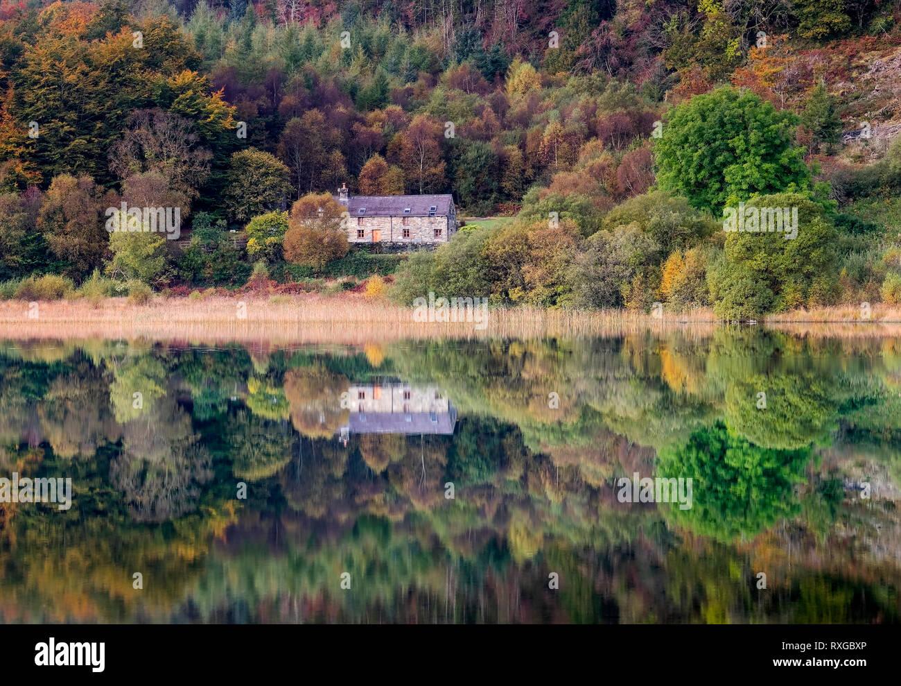 Perfekte Spiegelungen in Llyn Geirionydd, in der Nähe von Trefriw, Conwy County Borough, Snowdonia National Park, North Wales, UK Stockbild