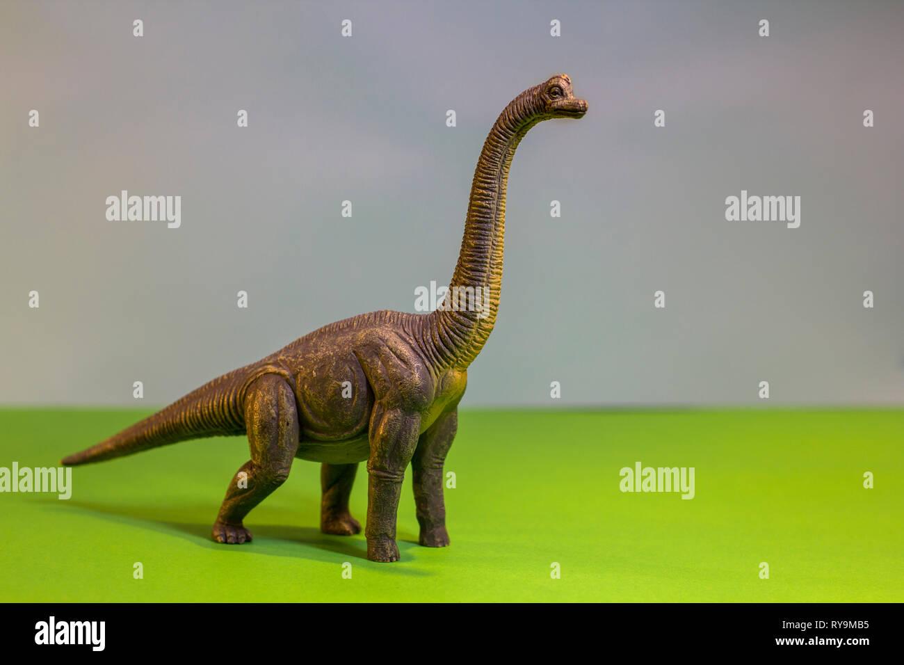 Spielzeug Dinosaurier in einem Spielzeug Wald. wie ein echter T-Rex auf einem hellen Studio Hintergrund mit Holz- bäumen. Eco Spielzeug. Stockbild