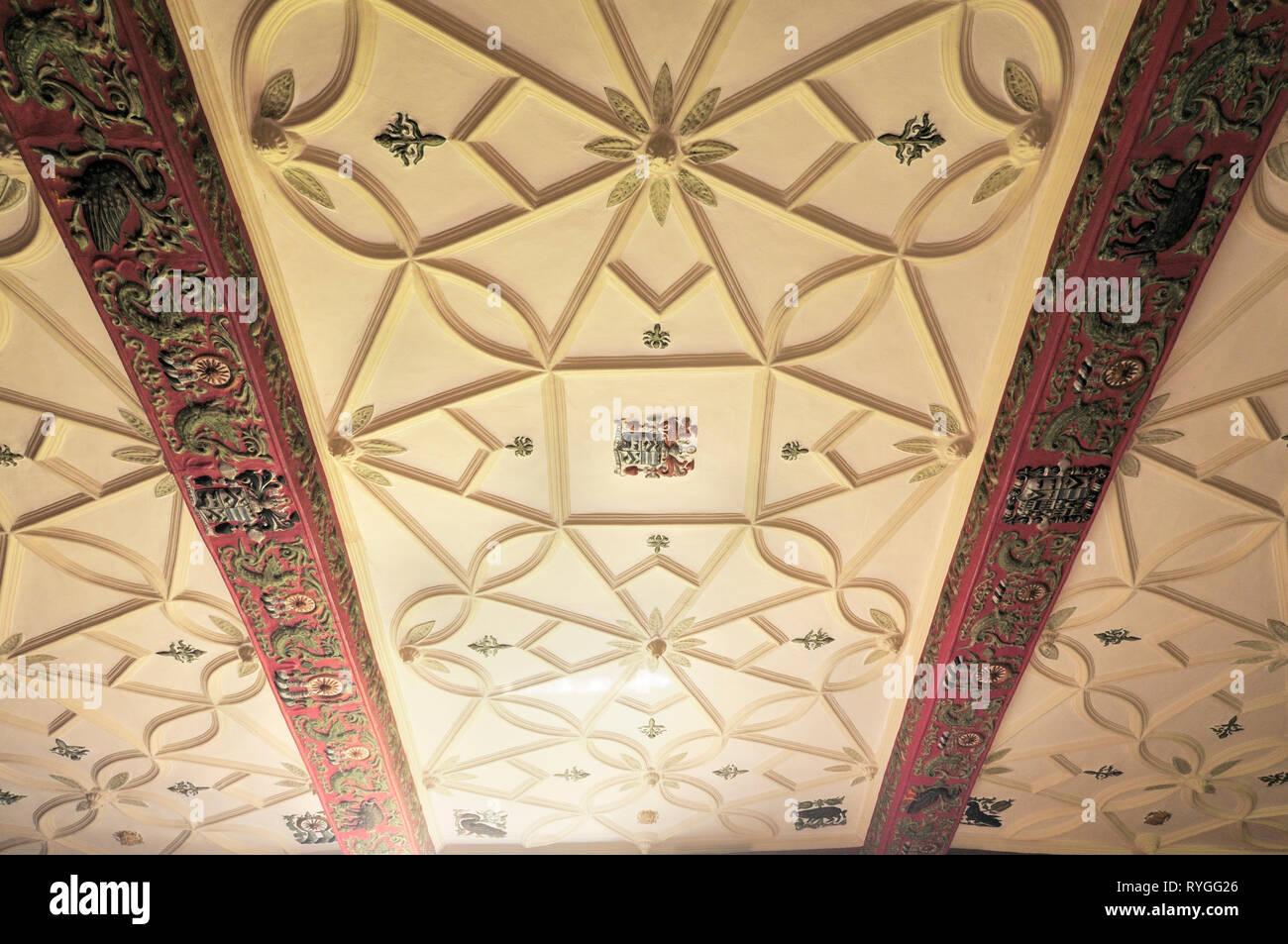 Dekorative Deckenplatten Stockbild