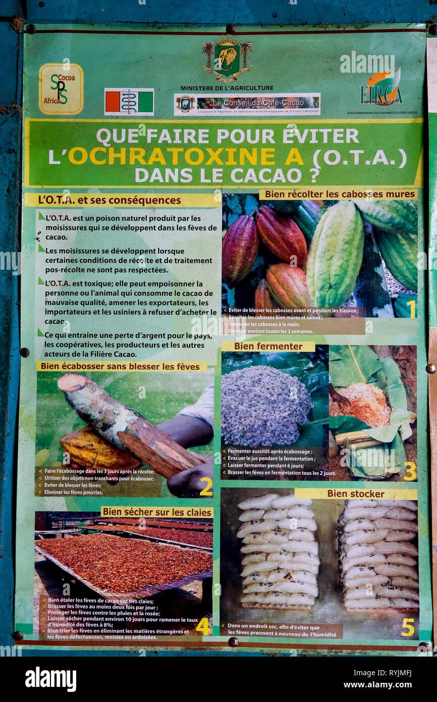 Poster mit Beratung (in Französisch) am Baum Krankheit Vermeidung während der Kakaoproduktion in Agboville, Elfenbeinküste. Stockbild