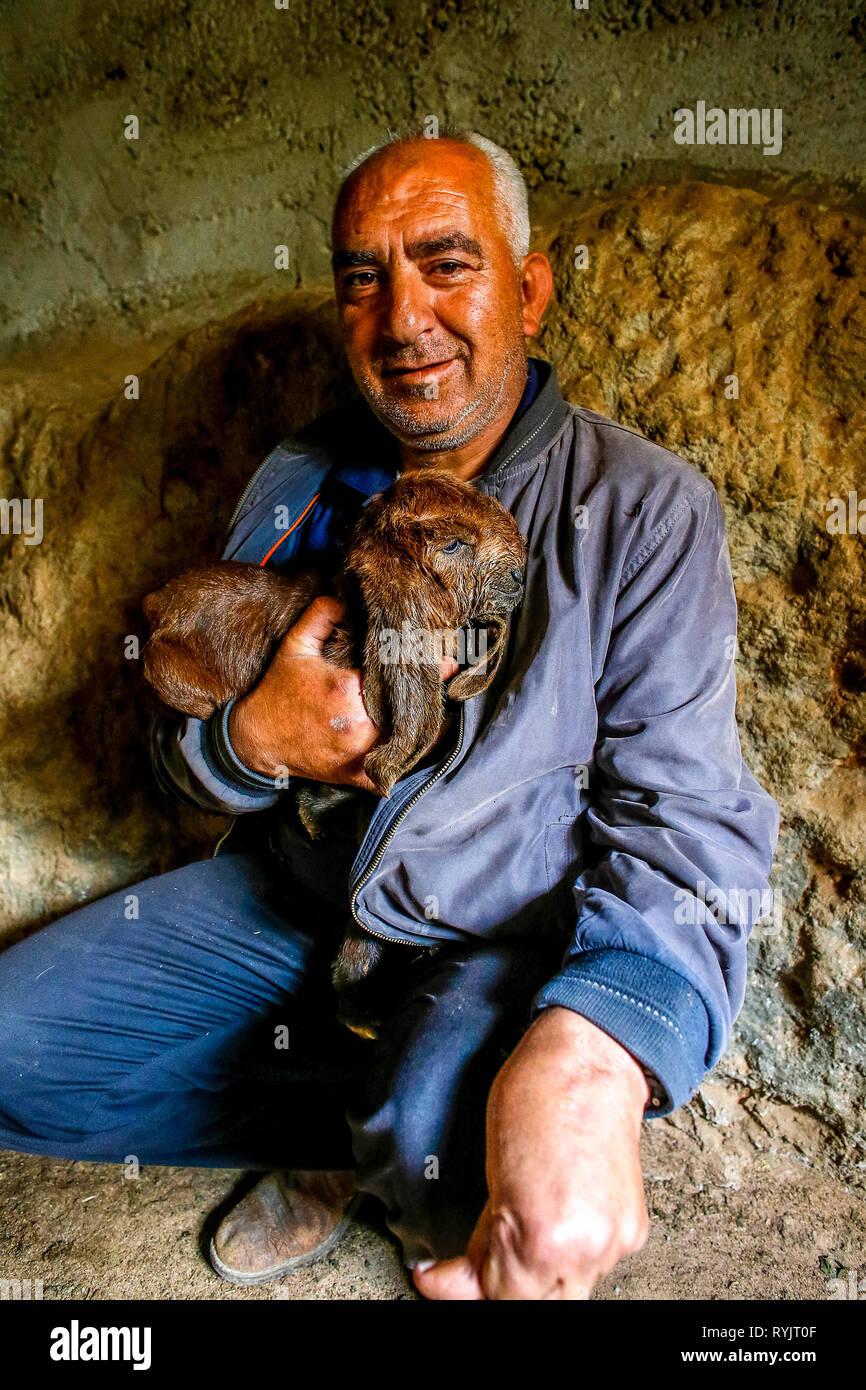 Deaktiviert Abed Alsalahm Mohammed Abed Mahdi Khamaiseh erhielt ein zinsloses Darlehen in Höhe von US $ 4000 ACAD Finanzen Rinder in Taffoh, West Bank zu erhöhen, Stockbild