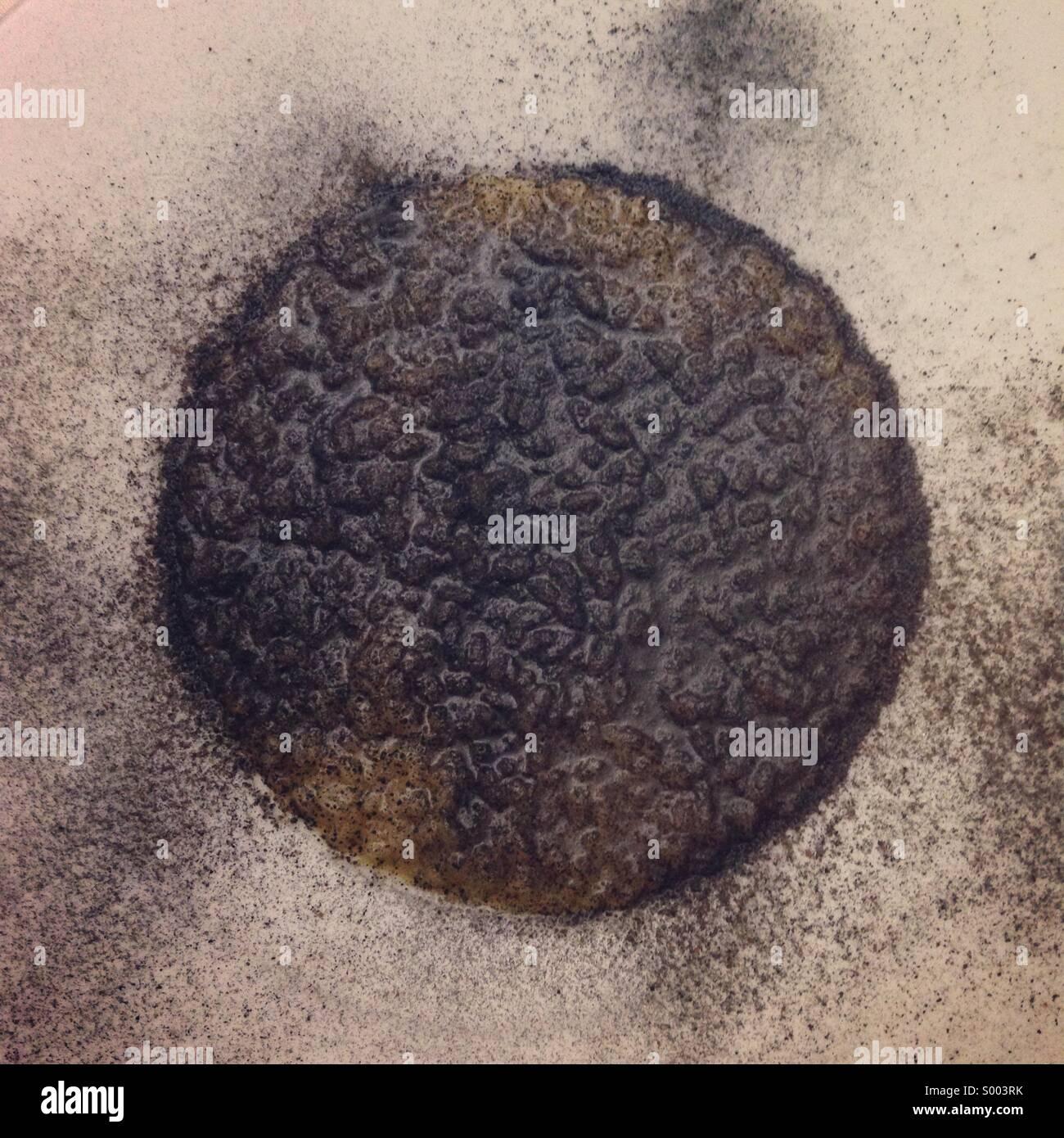 Schwarze paella Stockbild