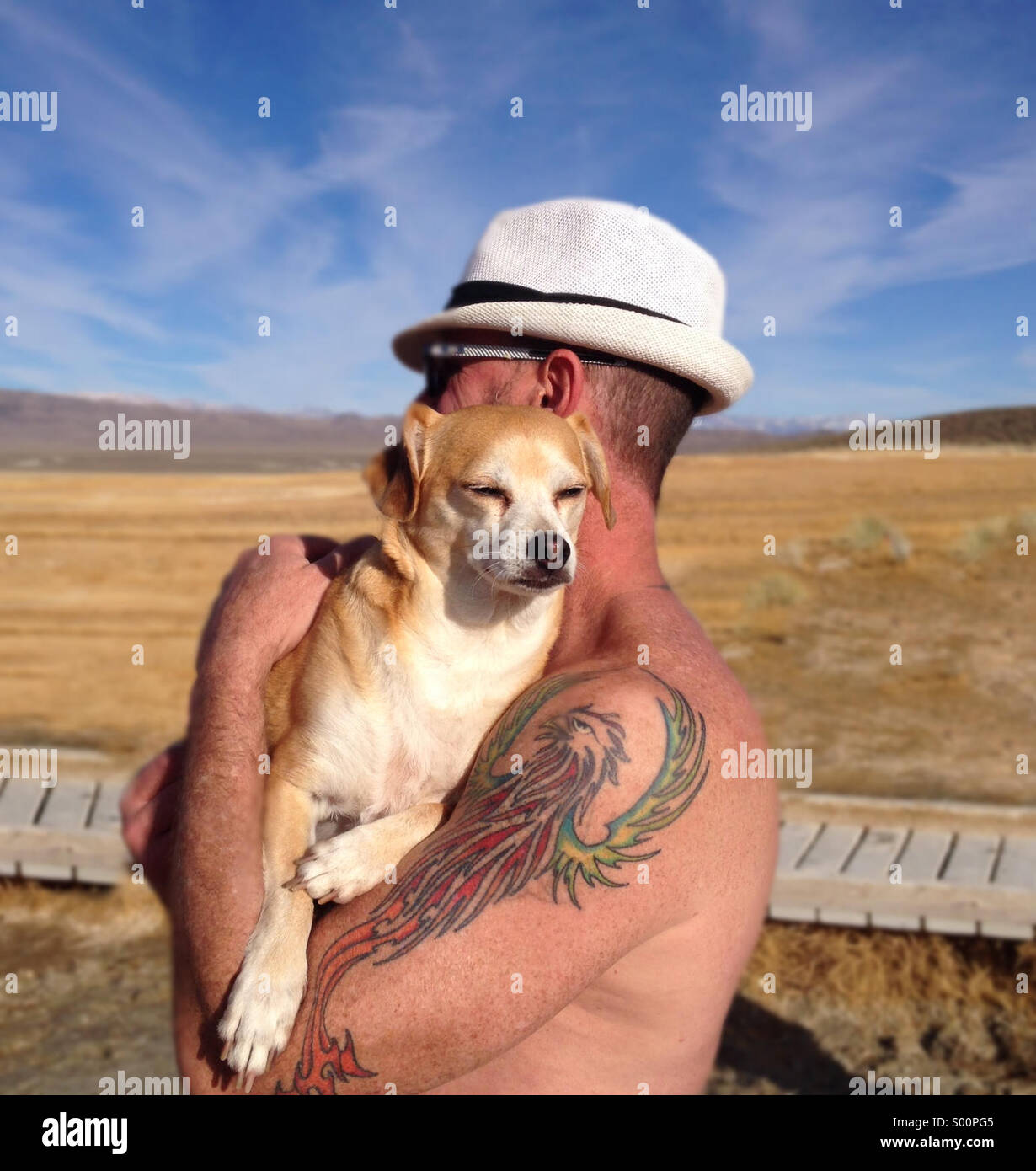 Mann mittleren Alters Holding Terrier-Chihuahua Hund in Owens Valley von Mammoth Lakes, Kalifornien Stockbild