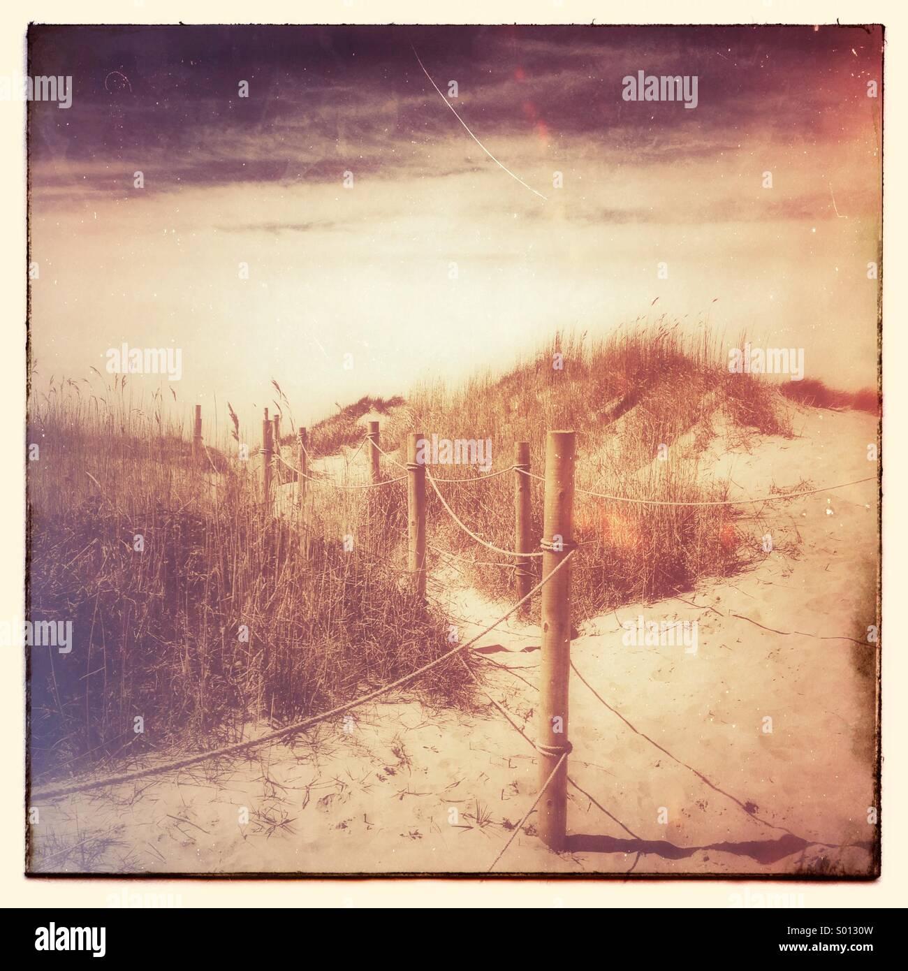 Fußweg durch die Sanddünen Stockbild