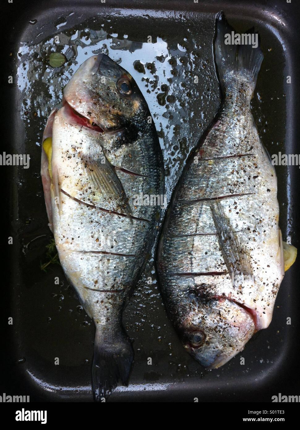 Fisch kochen Stockbild