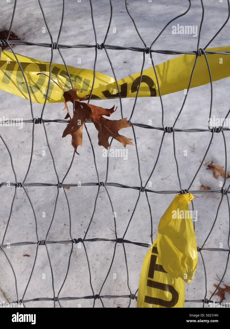 Eichenblatt gefangen in der Nähe von verdrehten gelbe Absperrband ...