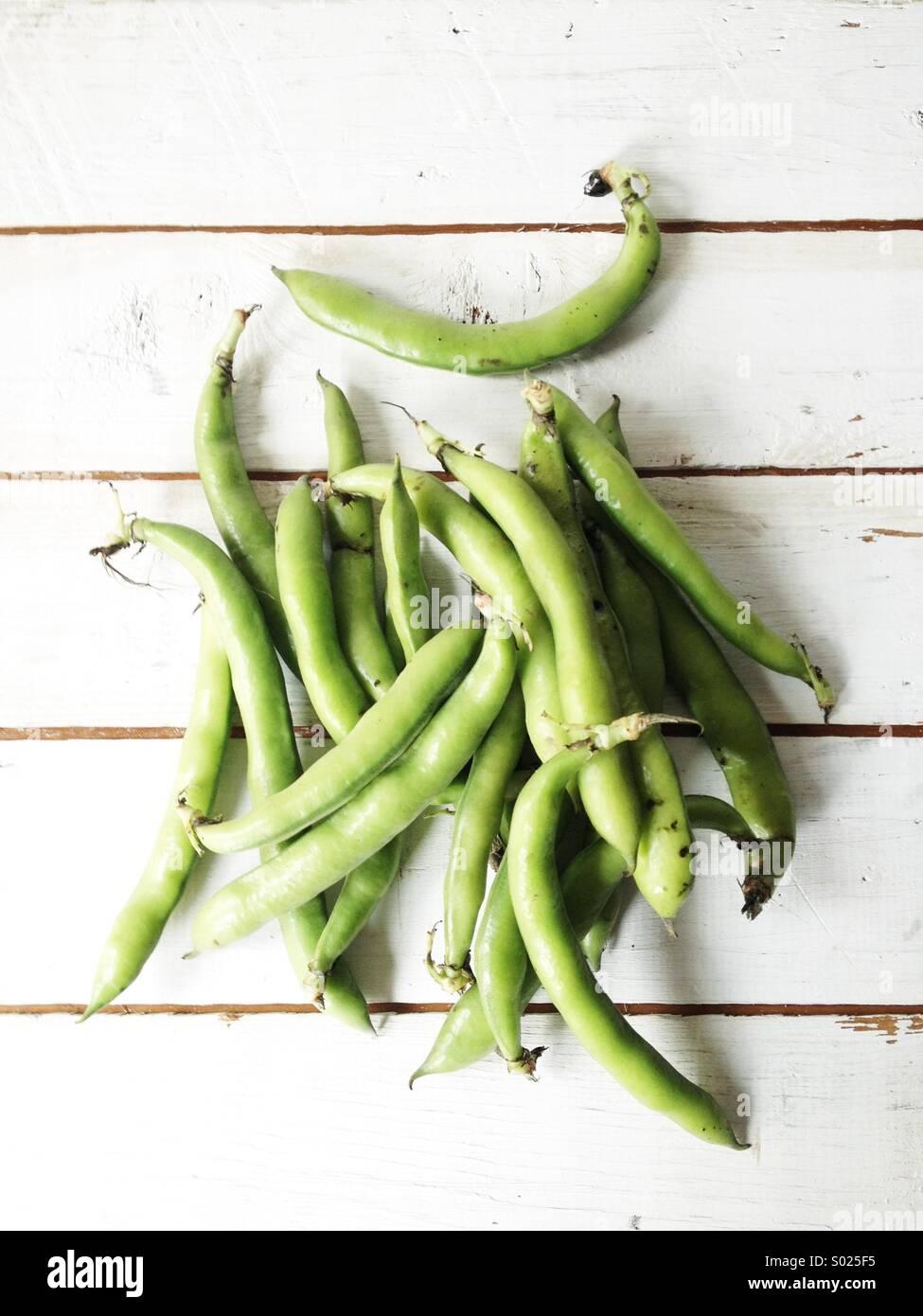 Frisch geerntete grüne Bohnen Stockbild