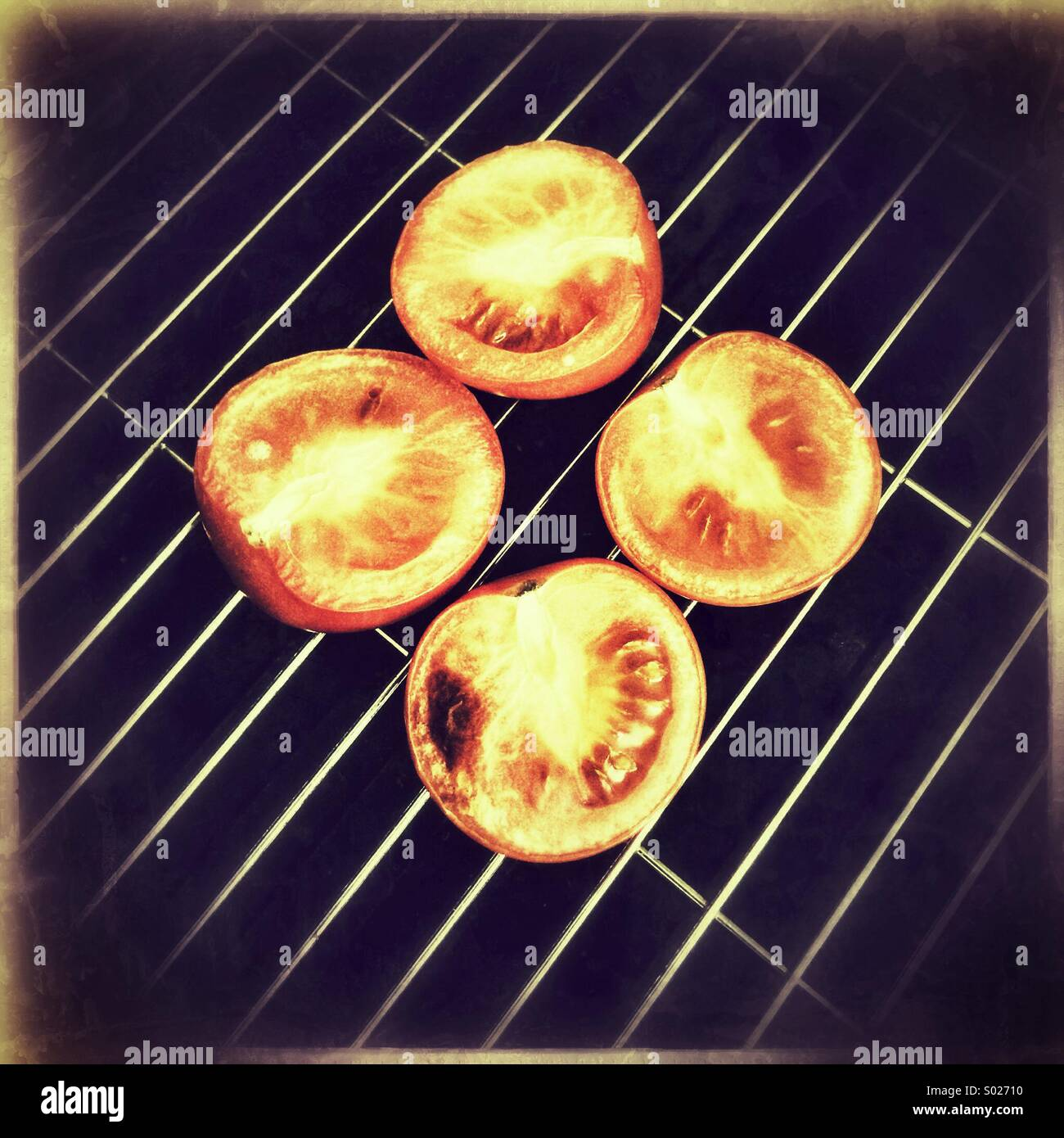 Tomaten auf Grillpfanne Stockfoto