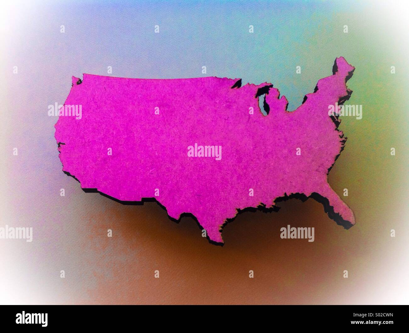 Rosa USA Stockbild